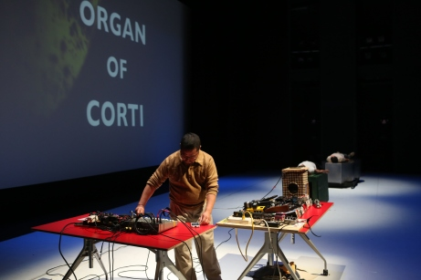 "Alan Nakagawa, ""Organ of Corti (excerpt),"" 2013. Media: Live music, 15 minutes, Sound Beds, Video Dimensions: REDCAT, Disney Hall, Los Angeles CA Installation: REDCAT Venue: REDCAT Name of show: Spring Studio 2013"