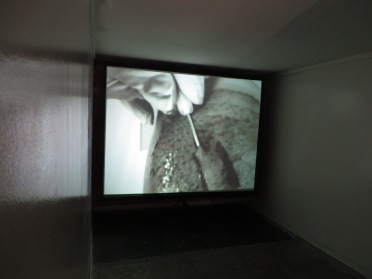 "Alan Nakagawa, ""Organ of Corti Part 2,"" 2014. Media: Video, Sound Beds, Sound Loop, Lighting Dimensions: Two Rooms Installation: In two rooms Venue: Cordary Arts Name of show: Lime Light"